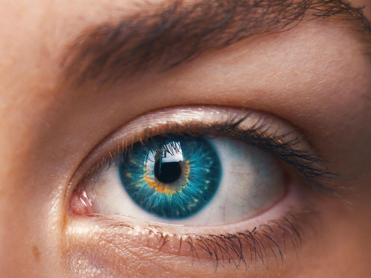 Augen blaue grün grau Augenfarbe grün